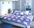 经典卧室装饰 单身青年的追求