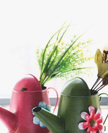 如何让花朵在居室内四季开放