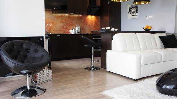 34平米黑白色美观公寓