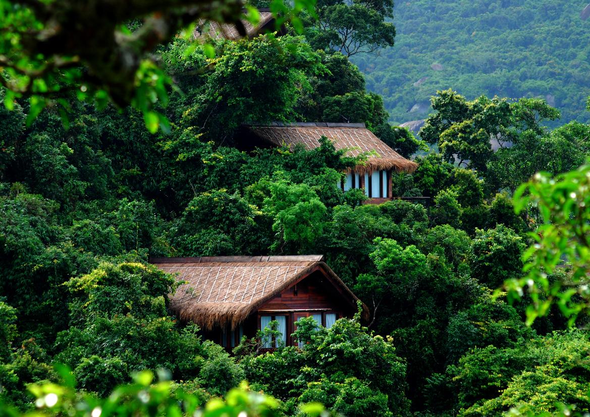 热带天堂森林公园,酒店_三亚热带天堂森林公园图片