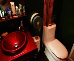 繁花盛開的情趣浴室