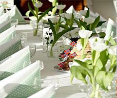 美味餐桌  美丽生活