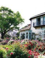 女人梦想中的花园洋房