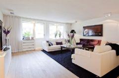 丹麦那维亚精致简约公寓