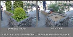 绿化改造工程