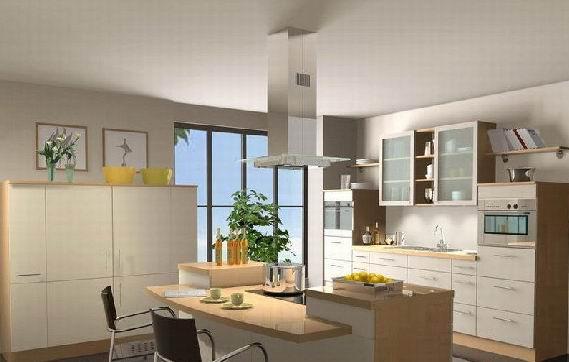 家庭装饰厨房经典图片2 客厅装修效果图