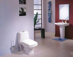 人见人爱的卫生间图片